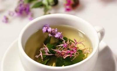 иван чай при лечении простатита